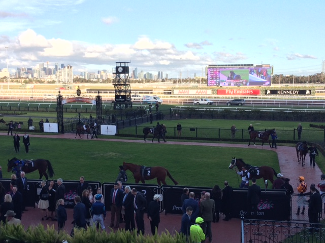 VRC_Mounting yard _ last race